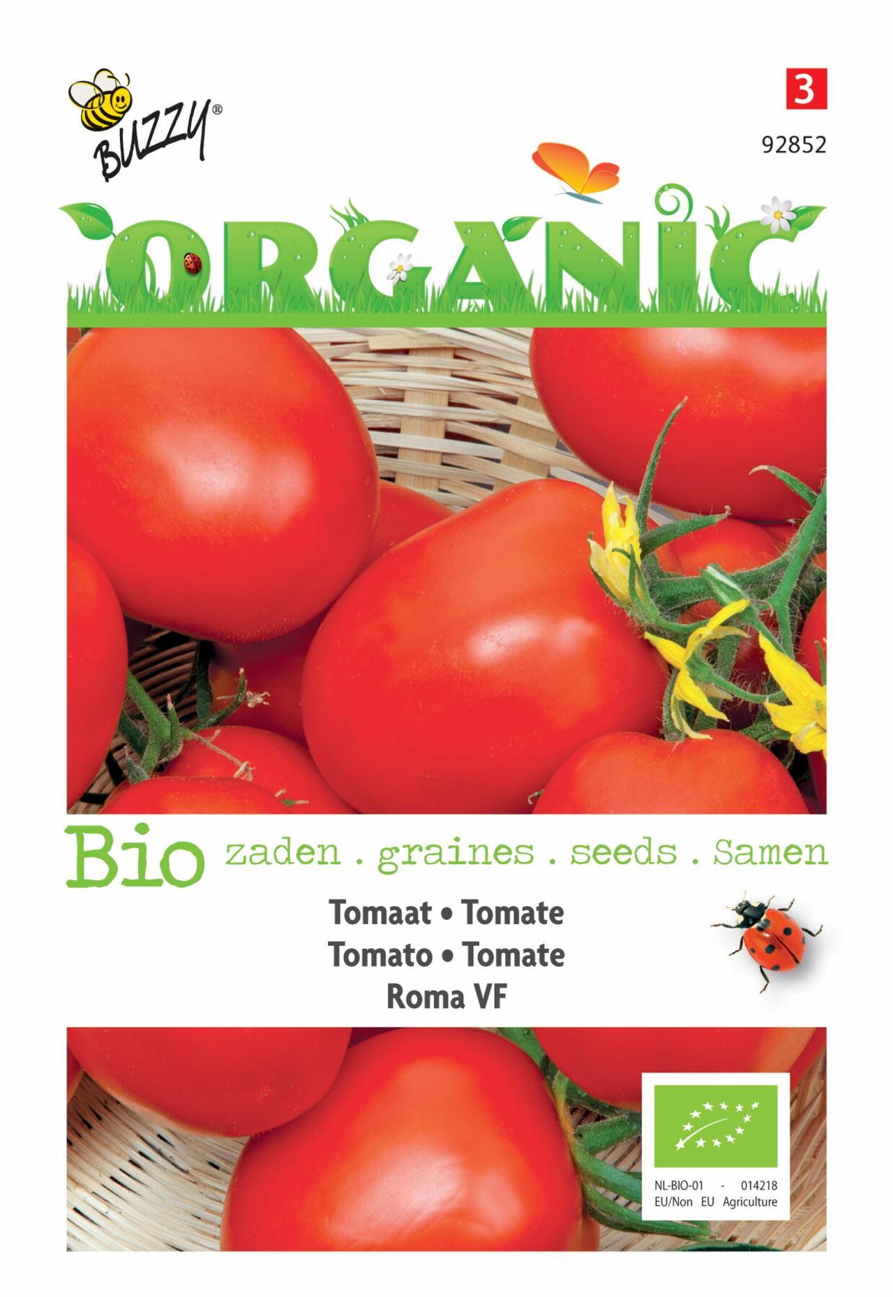 Solanum lycopersicum 'Roma VF' (BIO) plant