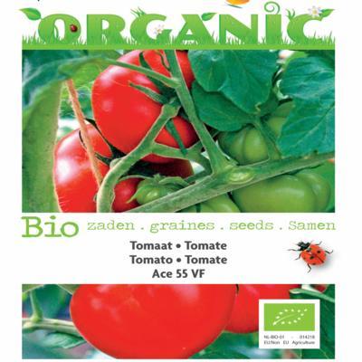 solanum-lycopersicum-tomaten-ace-55-vf-bio