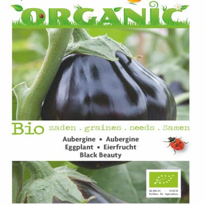solanum-melongena-black-beauty-bio