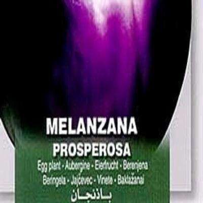 solanum-melongena-prosperosa