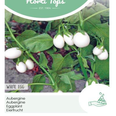 solanum-melongena-white-eggs