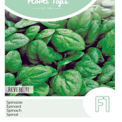 spinacia-oleracea-revere-f1