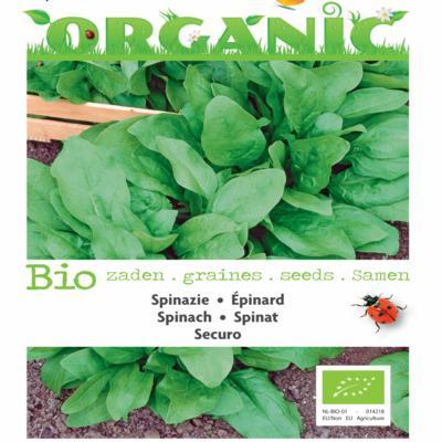 spinacia-oleracea-securo-bio