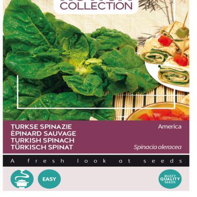 spinacia-oleracea