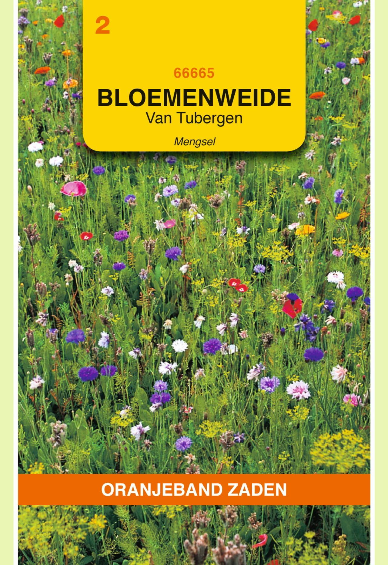 Van Tubergen bloemenweide mengsel plant