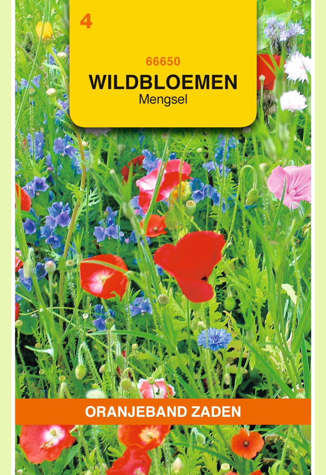 Wildbloemen mengsel eenjarig - 10 m² plant