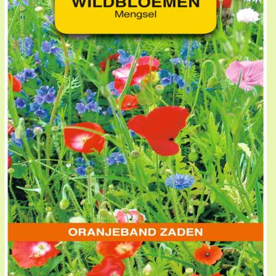 wildbloemen-mengsel-eenjarig-10-m