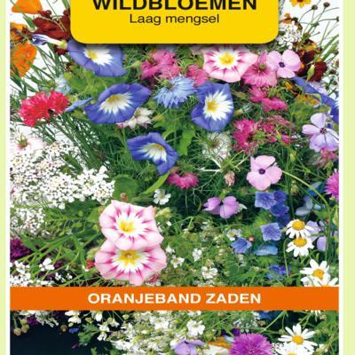 wildbloemen-mengsel-eenjarig-laag